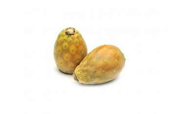 Плод кактуса