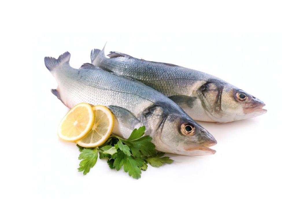Рыба в картинках