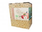 Сок «Золотой Пармен» яблочно-тыквенный органический 3л