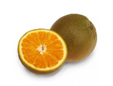 Апельсин шоколадный
