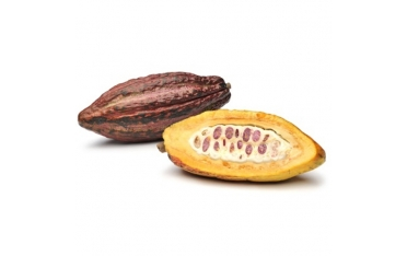 Какао фрукт