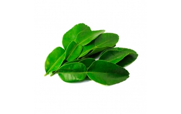 Листья лайма