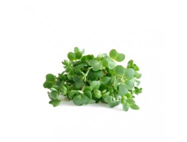 Кресс-салат 30г
