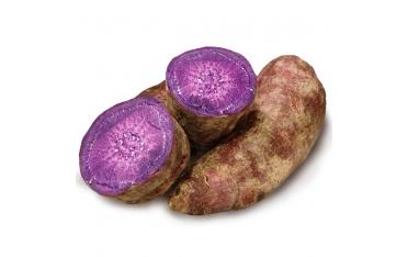 Батат фиолетовый