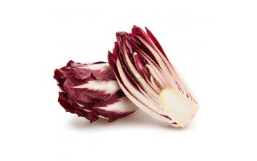 Цикорий салатный красный