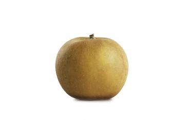 Яблоко Канада Грис