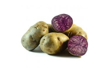 Картофель фиолетовый Украина
