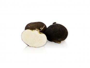 Редис чёрный