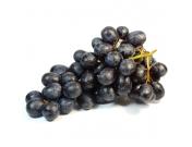 Виноград темный кишмиш