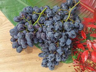 Виноград синій Україна - FreshMart