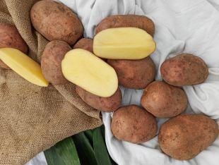 Картопля червона - FreshMart