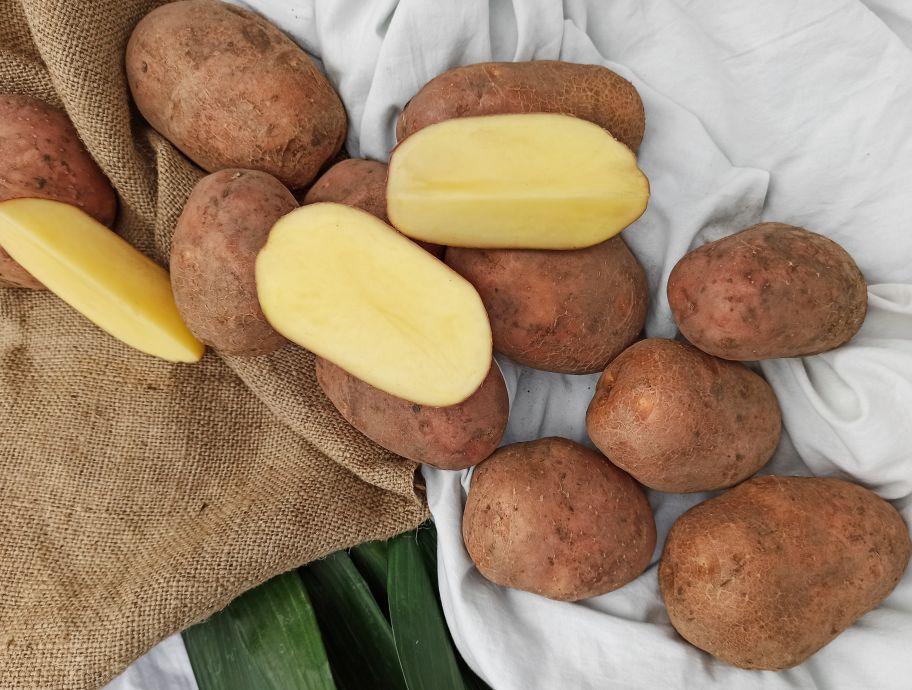 Картофель красный - FreshMart