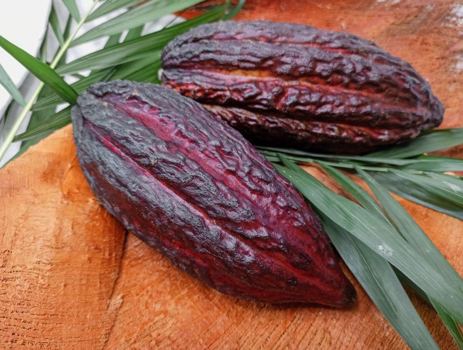 Какао-фрукт - FreshMart
