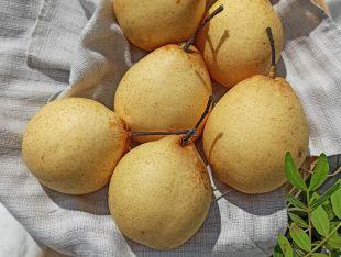 Грушевое яблоко - FreshMart