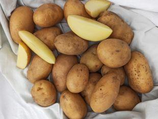 Картопля біла - FreshMart