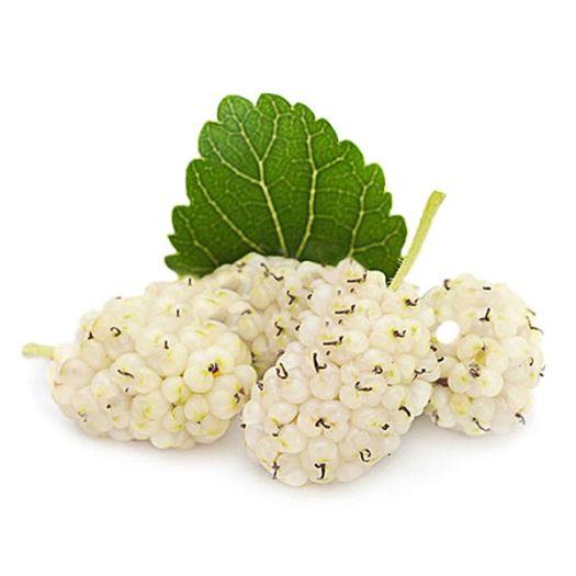 Шелковица белая - FreshMart