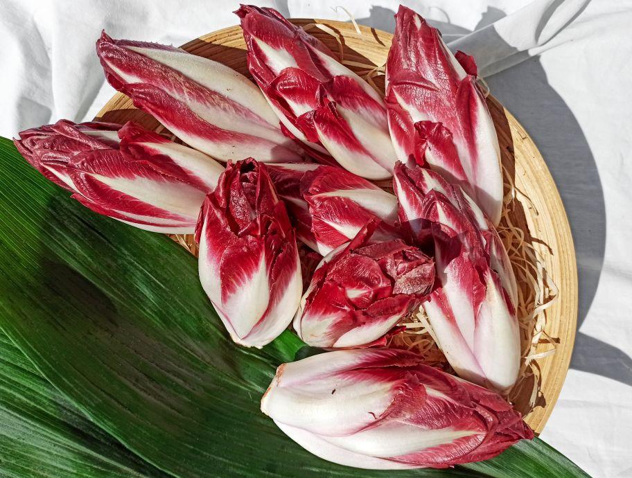 Цикорий салатный красный - FreshMart