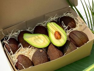 Набор авокадо Хасс 10 шт. - FreshMart