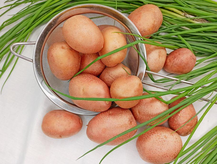 Картофель розовый мытый - FreshMart
