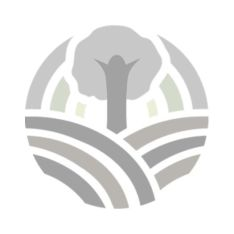 Баклажан органический - FreshMart