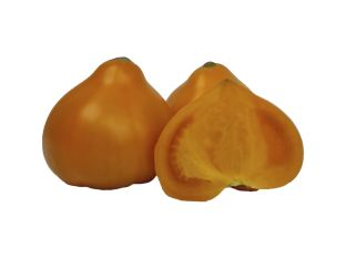 Помидор Махитос желтый - FreshMart
