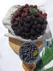 Набір для ягідного компоту - FreshMart