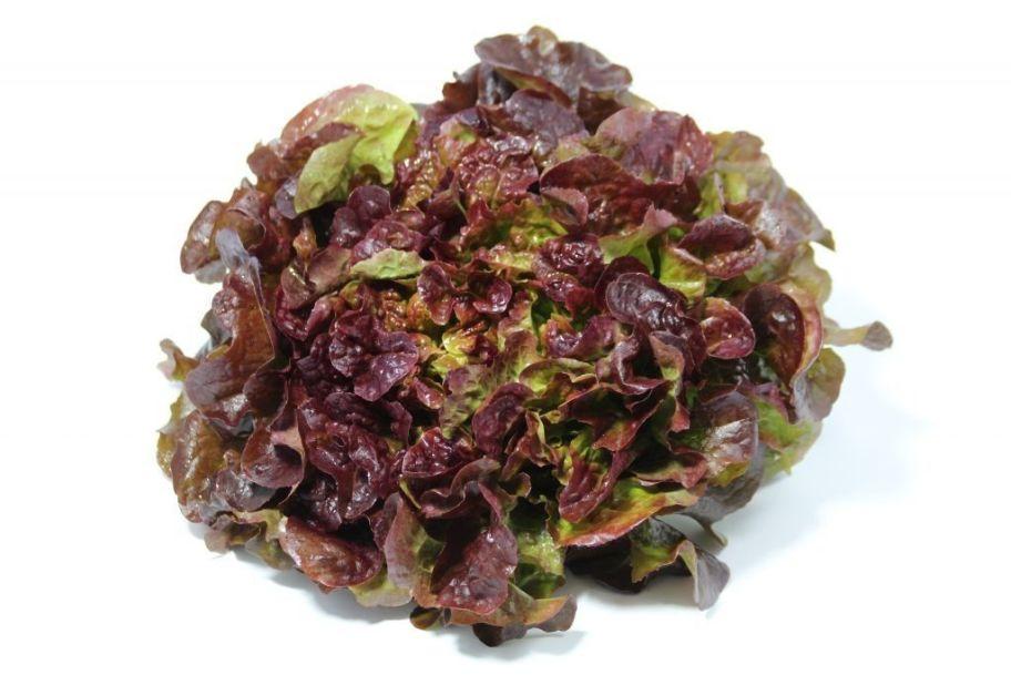 Салат Дубовый лист красный - FreshMart