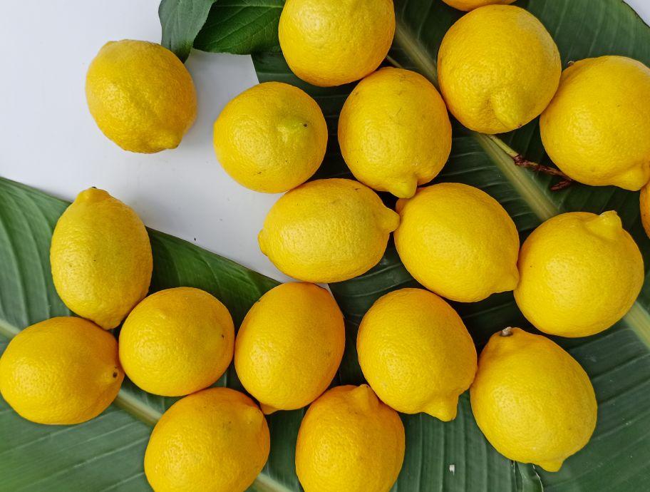 Лимон: фото 2 - FreshMart